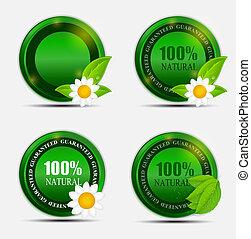 Natural Green Label Set. Vector Illustration