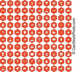 100 nature icons hexagon orange