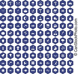 100 nature icons hexagon purple