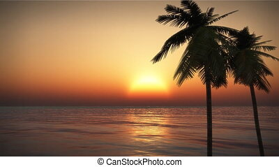 (1070) Tropical island Sunset with Palms - Looping tropical...