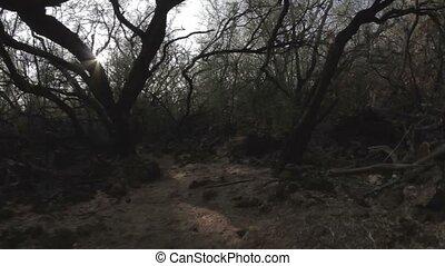 1080p, Walk through the Petroglyph - 1080p, Landscapes of...
