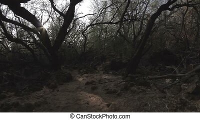 1080p, Walk through the Petroglyph