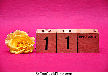 11 February on wooden blocks with a yellow rose on a pink background