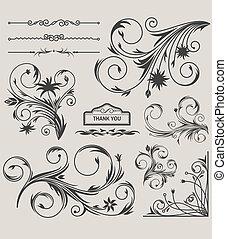 11 Floral Decorative Elements