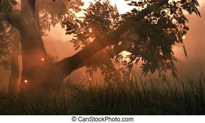 (1141), 요전같은 빛, fireflies, 여름, 목초지, 마술적인, 공상, 나무