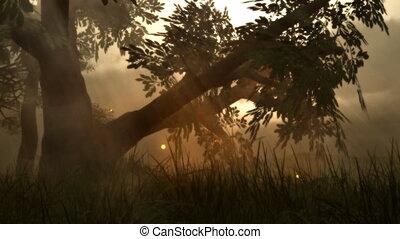 (1142) Fairy Lights Fireflies Summer Meadow Magical Fantasy...