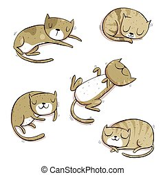 11_cats