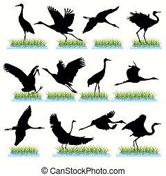 12 Cranes Silhouettes Set