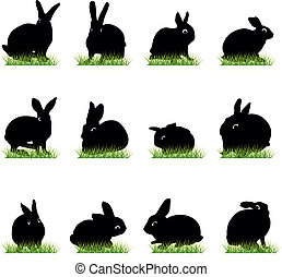 12 Rabbits silhouettes set