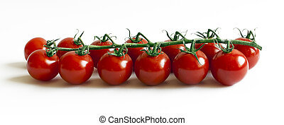 13 tomatoes on a branch