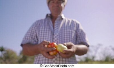 14-Portrait Man Farmer Smiling And Showing Tomatoes To...