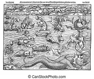 1550 ca., illustration of sea monsters