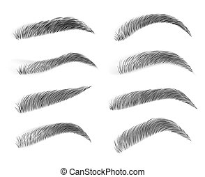 Brown eyebrows isolated on white background. Vector illustration