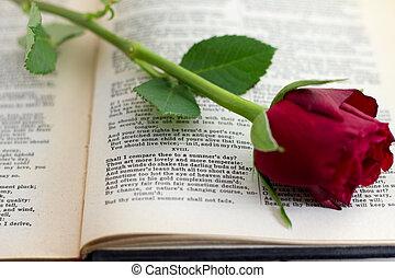 18, sonnet, rose rouge