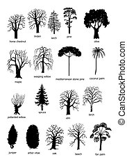18 types of trees - black and white forms of the most common...