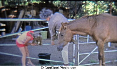 1973: Girl harassed by horse, gets - Unique vintage 8mm film...