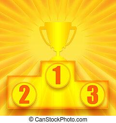 1st place winner