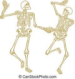 2, 骨骼
