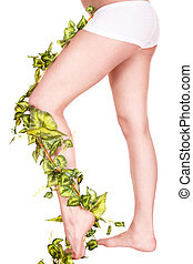 2, 다리, 와, 녹색, leaves.