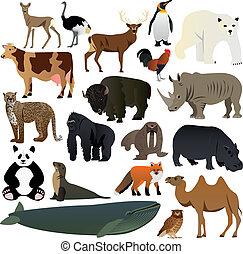 2, animaux