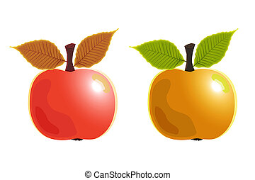 2 apples on white background .