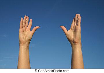 #2, arriba, manos