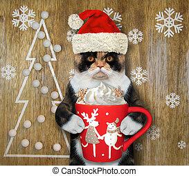 2, bebidas, gato, creme, café