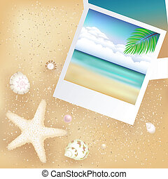 Blank Photos With Starfish - 2 Blank Photos With Starfish,...