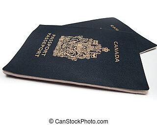 2, canadian, 여권, 고립된, 백색 위에서
