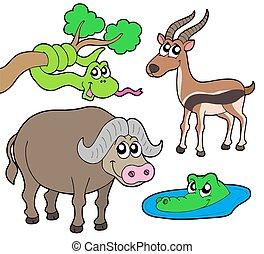 2, dieren, verzameling, afrikaan