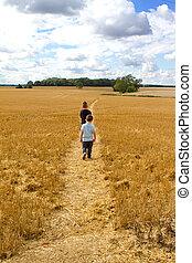 2 fiú, gyalogló, át, egy, búza terep
