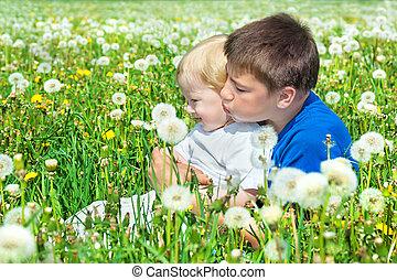 2 fiú, játék, képben látható, egy, nyár, kaszáló