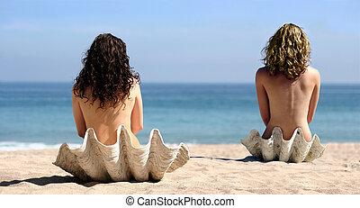 2 niñas, en, conchas marinas