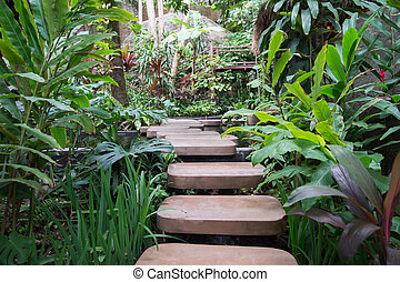 2. Stepped path through the Thai nature