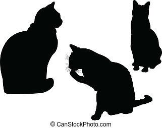 2, vektor, -, kollektion, katt