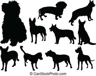 2, vettore, -, cane, collezione