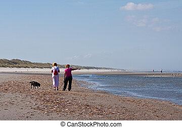 2, vrouwen, wandelende, met, een, dog, op het strand, dichtbij, de, zee