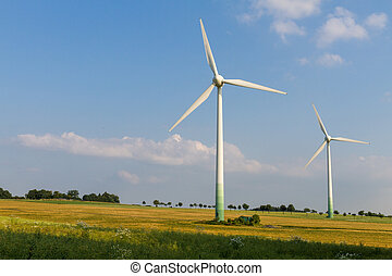 2 Wind engines with wild meadow and wheat field
