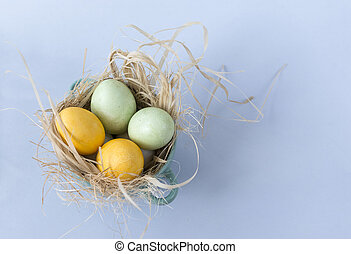 2, yellow, green, eggs, Easter, nest, blue background,