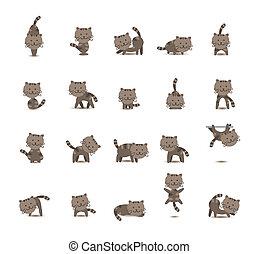 20 Set Cat