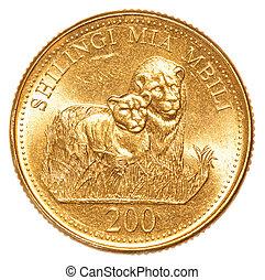 200, monnaie, shilling, tanzanien