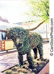 2002, fort, vert, valeur, taureau