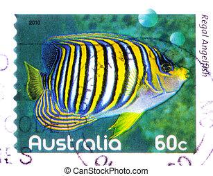 2010, królewski, tłoczyć, australijski, opisywanie, -, odwołany, opłata pocztowa, circa, australia, :, angelfish