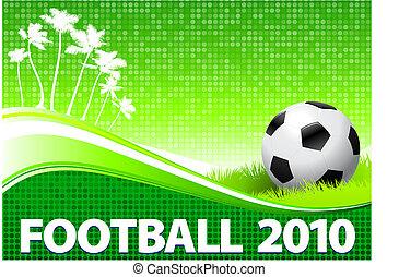 2010 Soccer Ball om Tropical Green Background