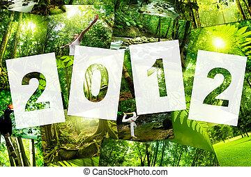 2012, glätta, täcka