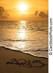2013 new year on the sand beach