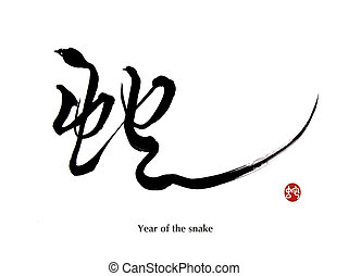 2013 year of the snake with paper background