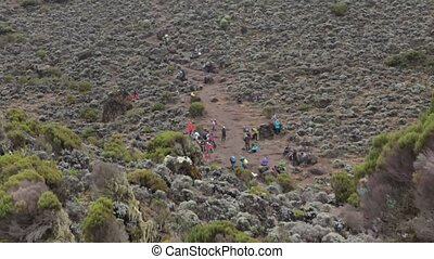 2014 02 Kilimanjaro, Tanzania: Machame Route on mountain. 4 day