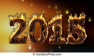 2015 burning year