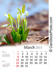 2015 Calendar. March. First flowers in the spring forest.